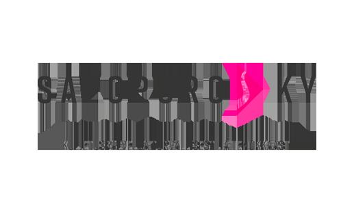 Salopuro Ky